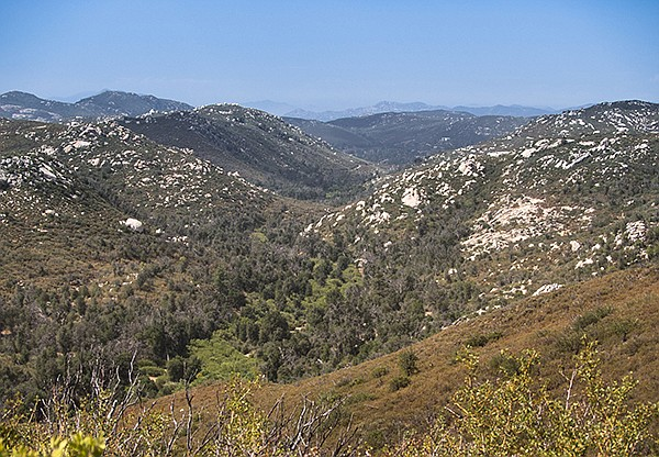 Oak woodland and riparian growth along the Sweetwater River, Pine Ridge Trail