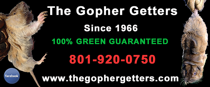 We are the only Gopher Getters, since 1966!  We are a woman-owned company and 100% Green, non-toxic, and we guarantee!