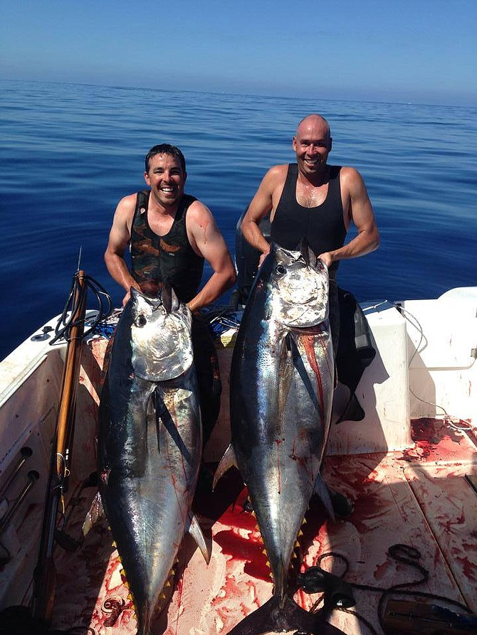 Capt Brian Castleton of the New Seaforth and Eric Weidele with two pending record bluefin tuna.