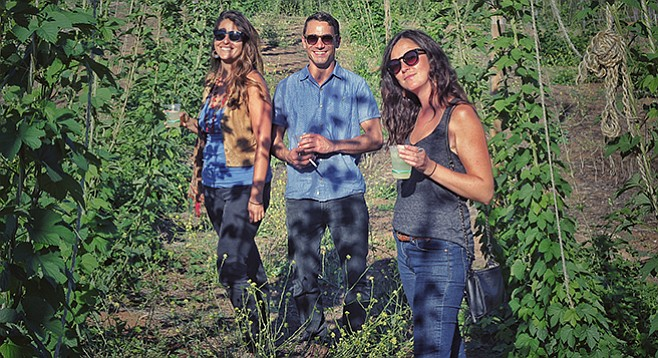Farm friends stroll through the vineyards drinking lemonade and gin.