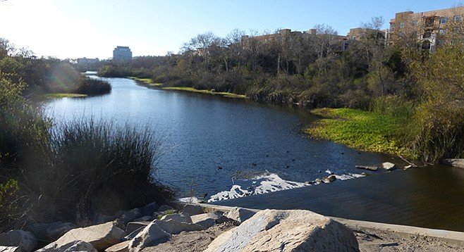 Walk along the San Diego River