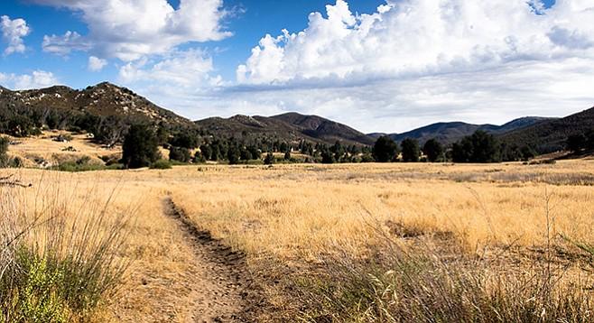 A meadow runs alongside the Sweetwater River.