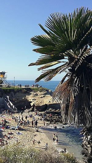 La Jolla Cove beach scene