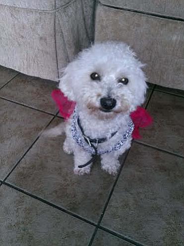 Aria, ready for the beach