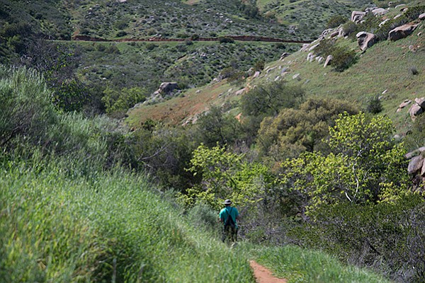 On the trail down to Santa Ysabel Creek