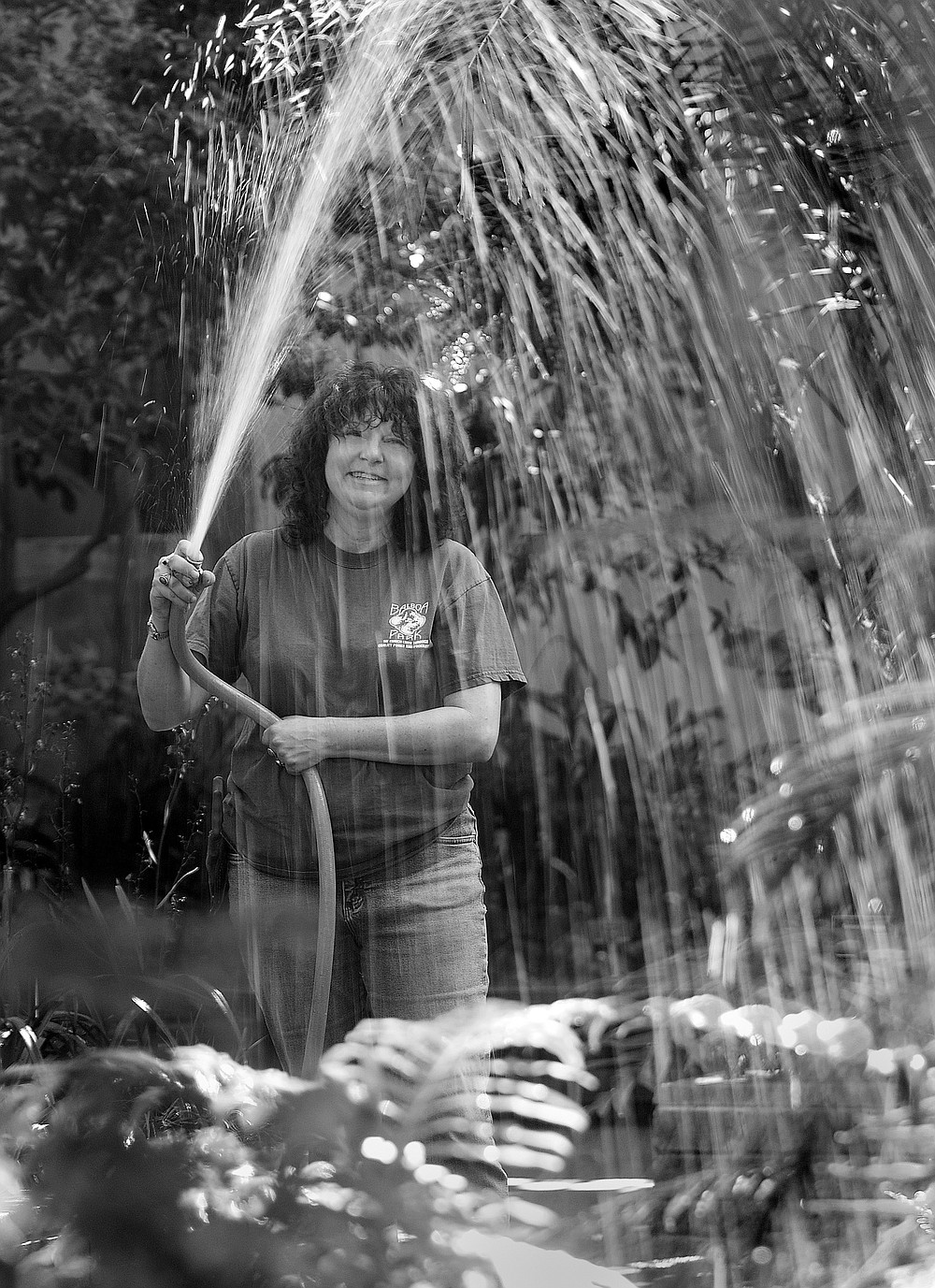 Paula Root likes to tuck orchids throughout the Botanical Building.