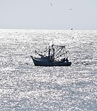 Early morning fishing boat off of Carolina Beach N.C.