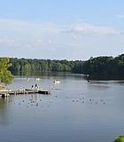 Bond Lake, Cary N.C.