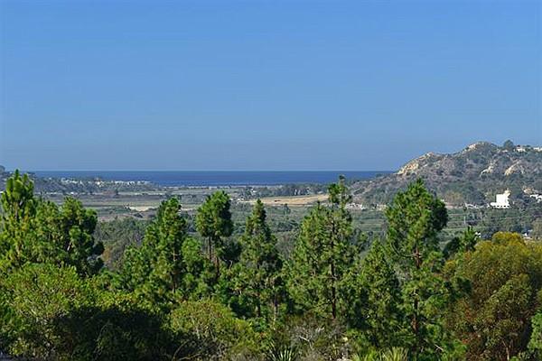 Hilltop ocean view