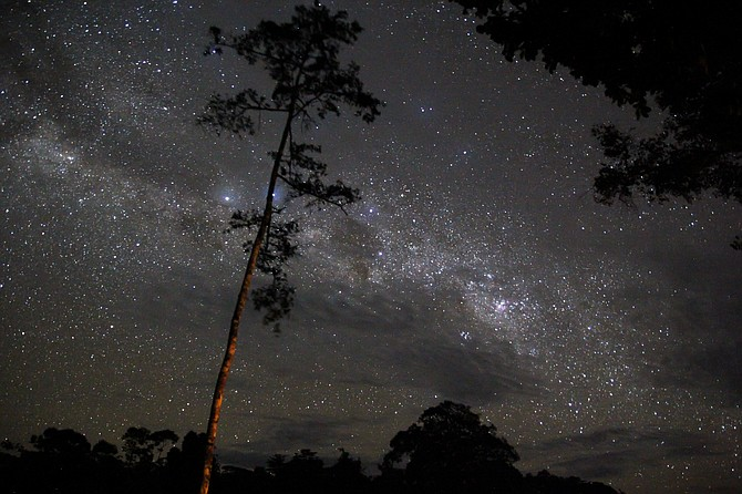 The night sky, from the middle of the Amazon Rainforest