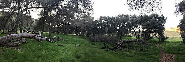 Panorama of Jamul Creek