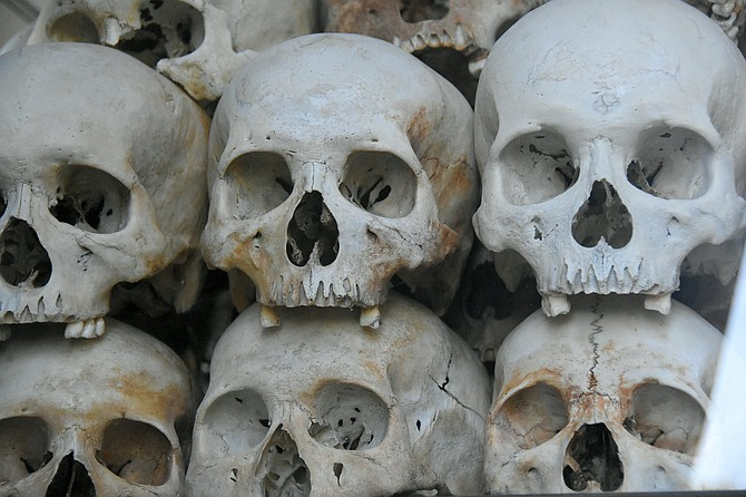 Close-up of skulls
