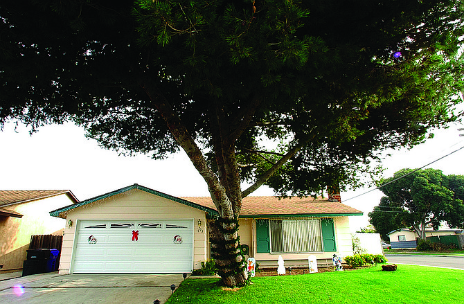 "1193 Thalia Street in Nestor. Vega and Vasquez were in ""grim"" condition, the detective said. They had both been shot in the head. Vasquez's brain stem was perforated; Vega had a bullet hole near his right ear."