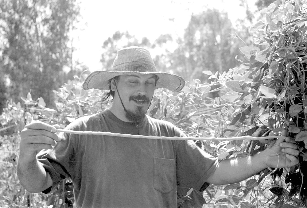 Dennis Sharmahd of Escondido promotes the Brazilian Butia capitata, or jelly palm, which bears small, round, orange-colored fruit with intense pineapple flavor.