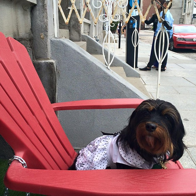 Madam CJ in Adirondack chair outside clothing store in Old Montreal