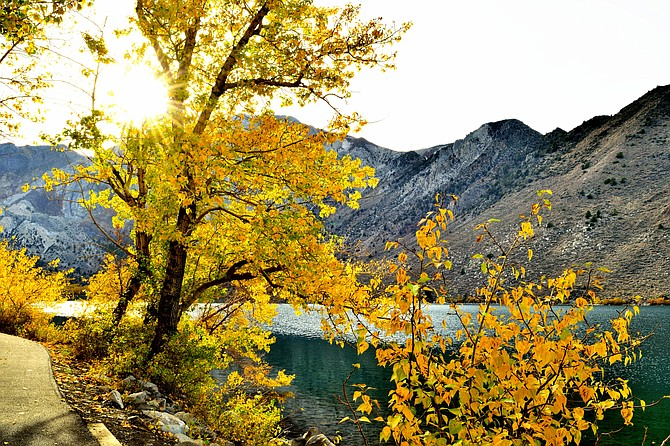 Fall at Convict Lake, Eastern Sierra's