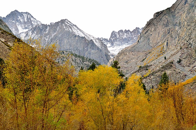 Fall at Big pine Creek Canyon in the eastern Sierras.