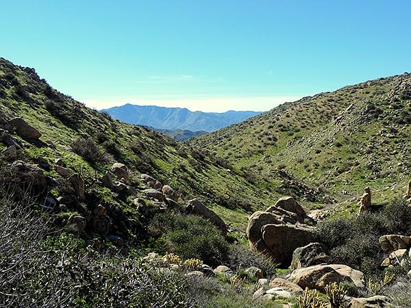 Jasper Trail winds down toward Grapevine Canyon.