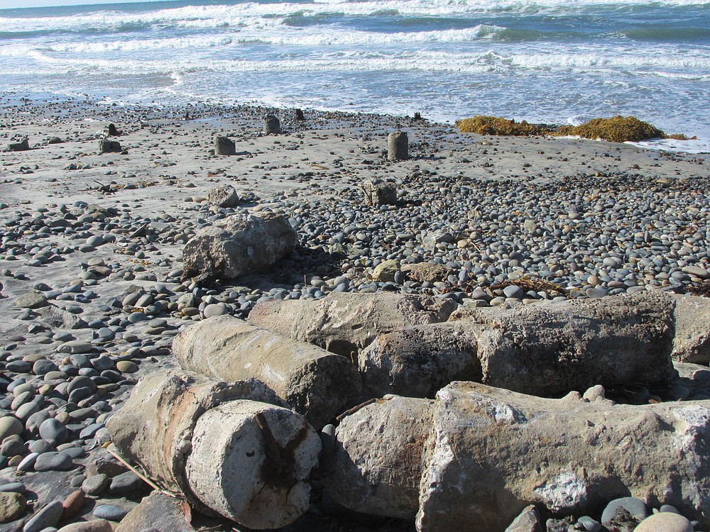 Exposed pilings from the old Cardiff pier