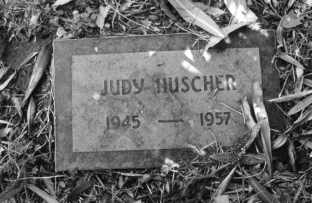 """Judy's stone, which says simply """"Judy Huscher, 1945–1957,"""" sits between Hank Decking and an oleander tree, whose long, poisonous leaves make flickering shadows on her name."""