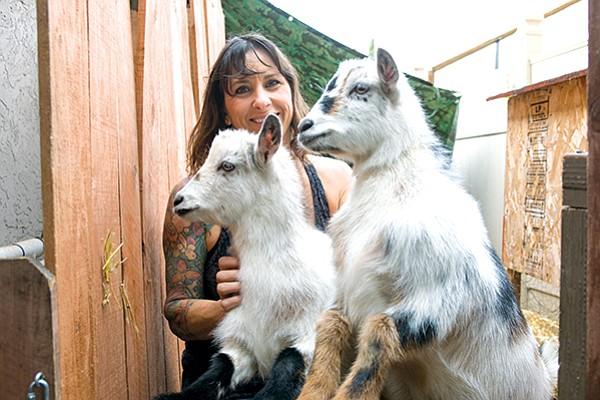 Jeri and goats