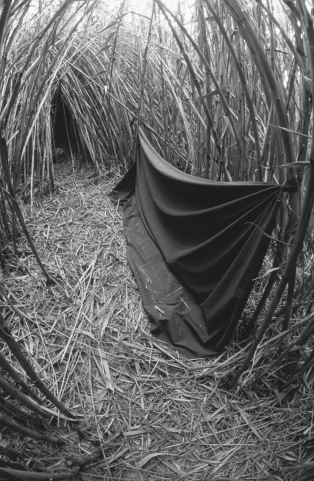 Along North River Road near Camp Pendleton are small, tentlike caves cut into the reeds; spanning the entrance to each hooch was a blanket or a plastic sheet.