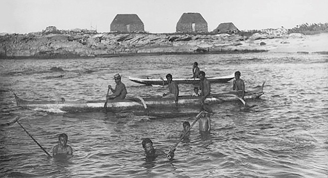 Outrigger canoes help bring in the catch, 1885