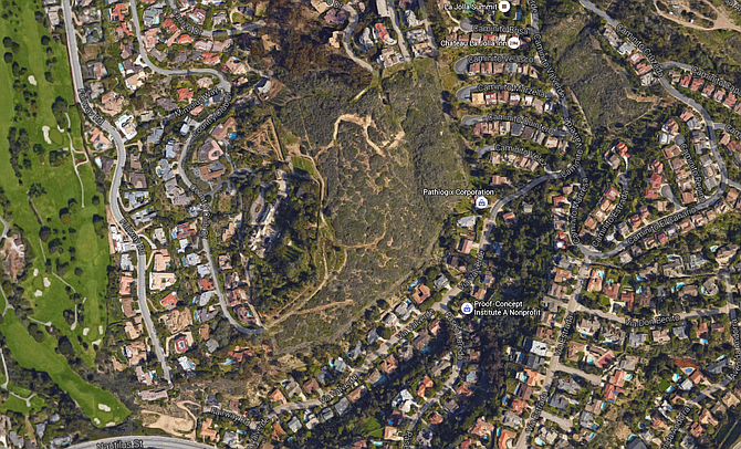 The Copley estate (left of center) included 25 acres of open space, the fate of which is now being bandied about.