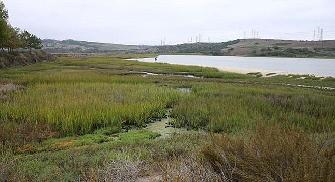 Agua Hedionda Lagoon