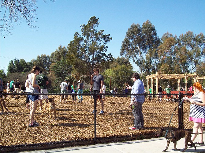 Satisfied customers at the new dog park in Normal Heights