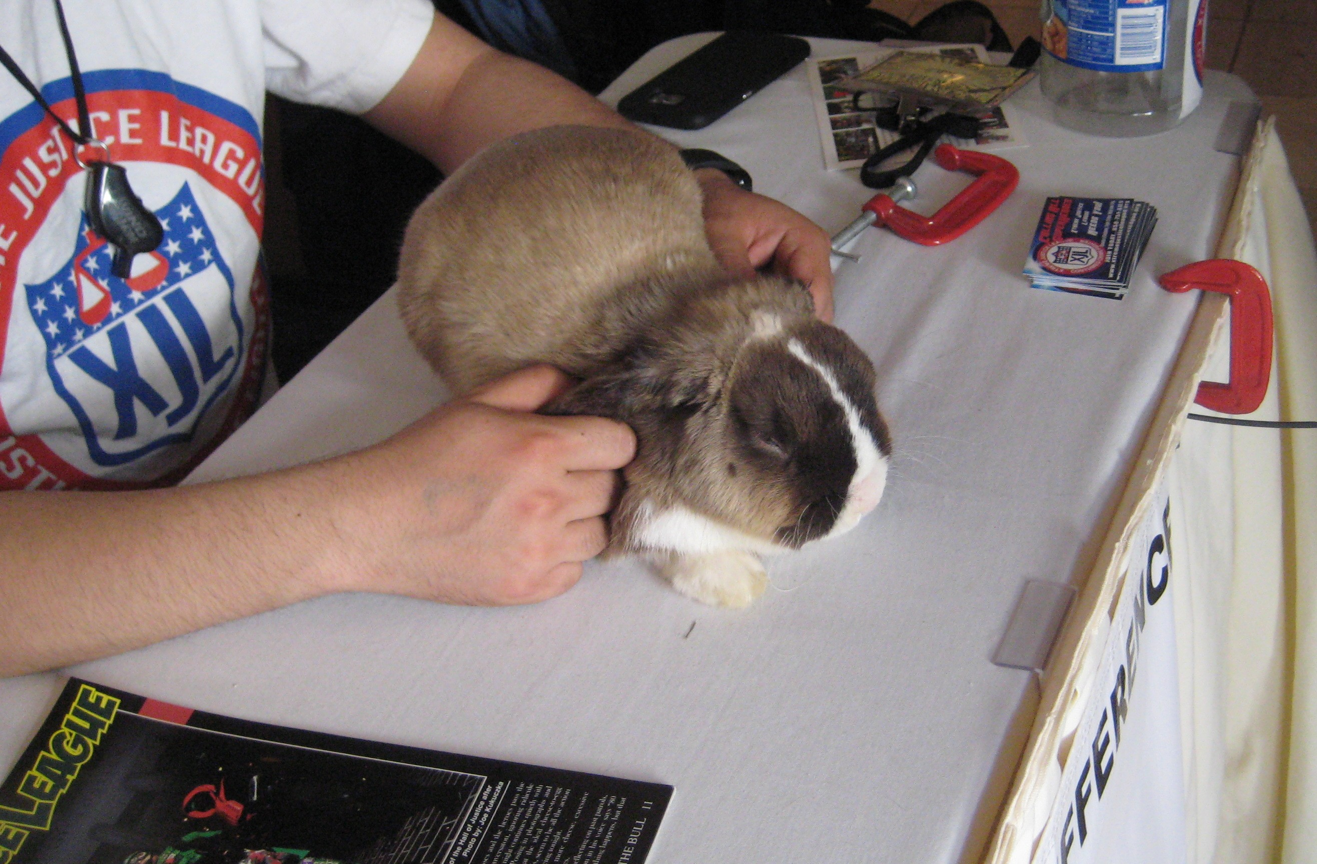 rabbit at Xtreme Justice League table