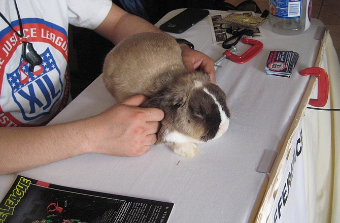 rabbit at Extreme Justice League