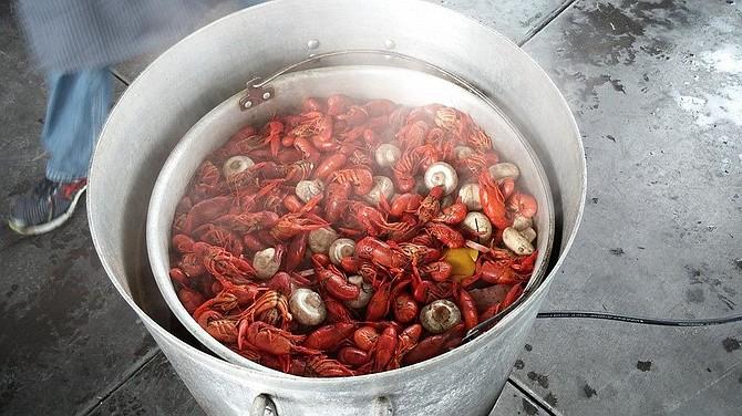 2014 boil