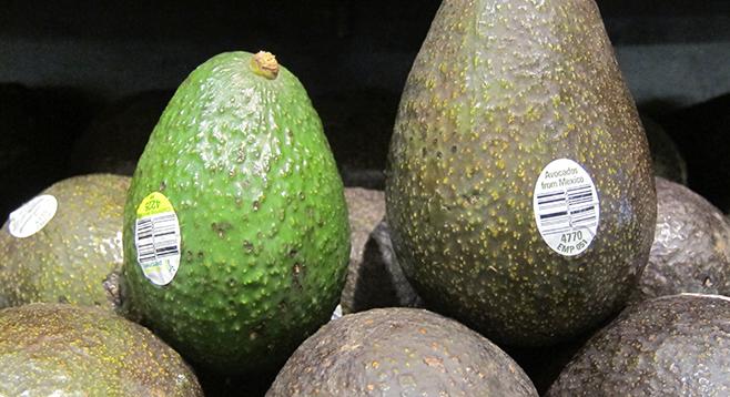 Vw San Diego >> Avocado prices plunging   San Diego Reader