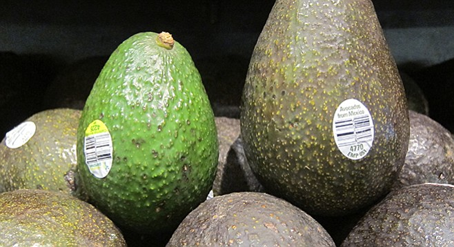 "A ""large"" avocado from California next to an ""extra large"" avocado from Mexico at a local grocery"