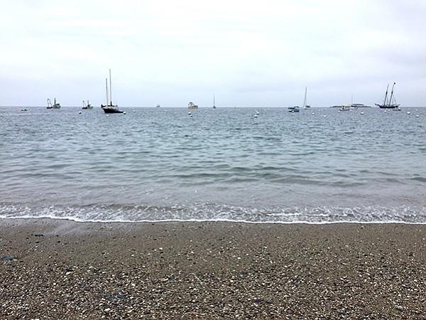 Catalina shore