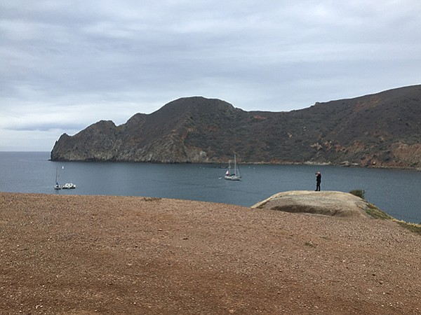 David photographs Catalina