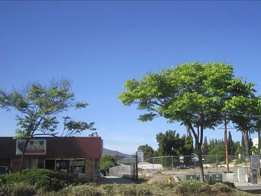 Future locale of Montebello North