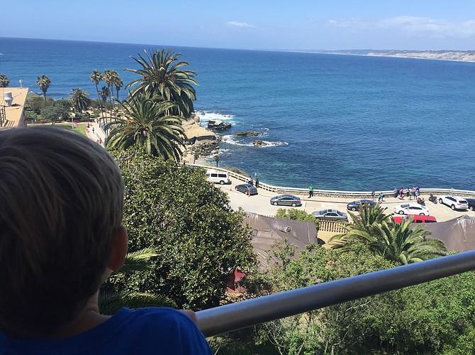 Overlooking La Jolla Cove