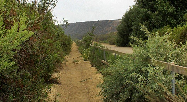 The trail leading to the beach