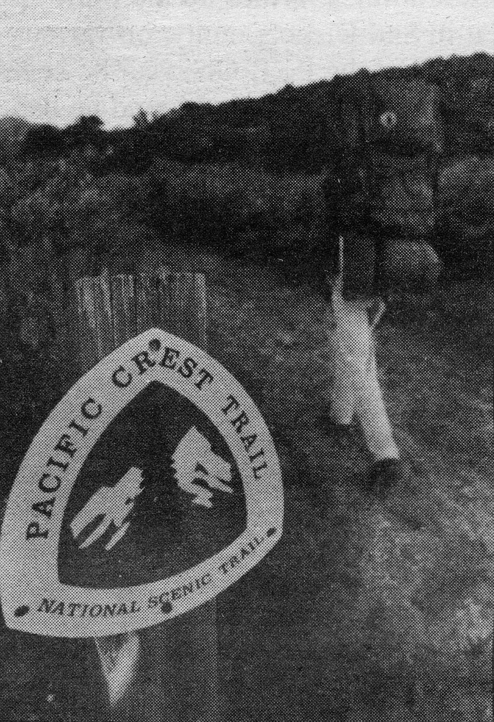 """Near Boulder Oaks. The signs with the PCT symbol — a green pine tree with a blue mountain in the background — have unfortunately become collectors' items. """"They have a life expectancy of three to four weeks."""""""