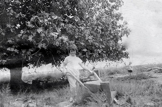 My sister with hand plow. My father came across an abandoned farm off Dairy Mart Rd. There was rusted equipment — an old well pump, a hand plow — and one lone live fig tree.