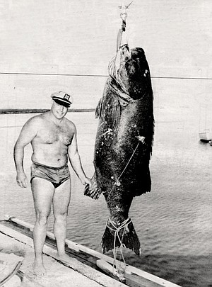 Potts took the world record by shooting a 401 1/2-pound black sea bass off the Coronado Islands in 1954.