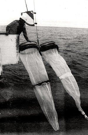 The bongo nets were used to make an integrated tow, which started down deep, usually at 200 meters.