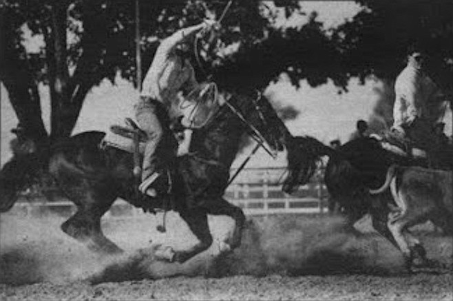 For all of this roping the steer lasts ten seconds — five and a halt seconds if the team is to be guaranteed some prize money.