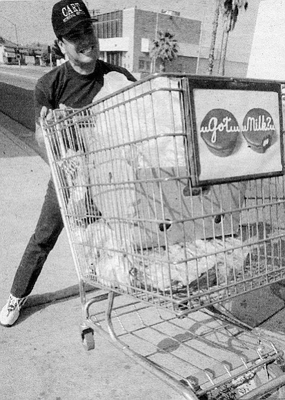 "Eddy Ventura: ""The other drivers when they see the guys pushing the carts [they say], 'Come on, give me my shopping cart....' When I see this [homeless] guy, sometimes I let him go."""