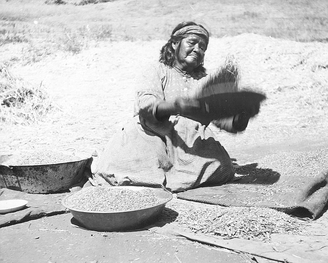 Estevan Wypooke cleaning wheat, 1908. In 1900, at Mesa Grande, Manzanita, Campo, and other Kumeyaay reservations, the old, infirm, and indigent were near starvation.