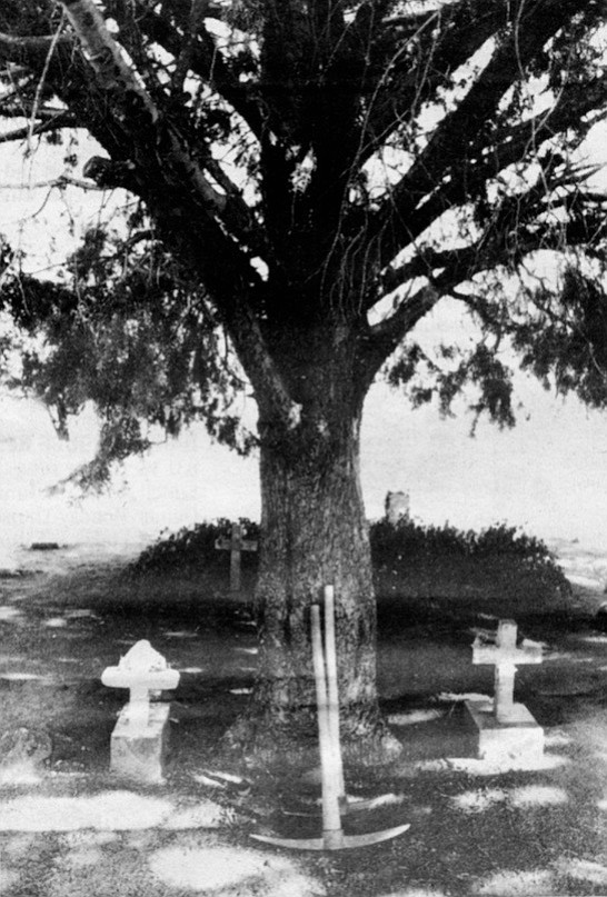 """""""They'd pray and sing all night long. A lot of people in the cemetery at Santa Ysabel were buried that way."""""""
