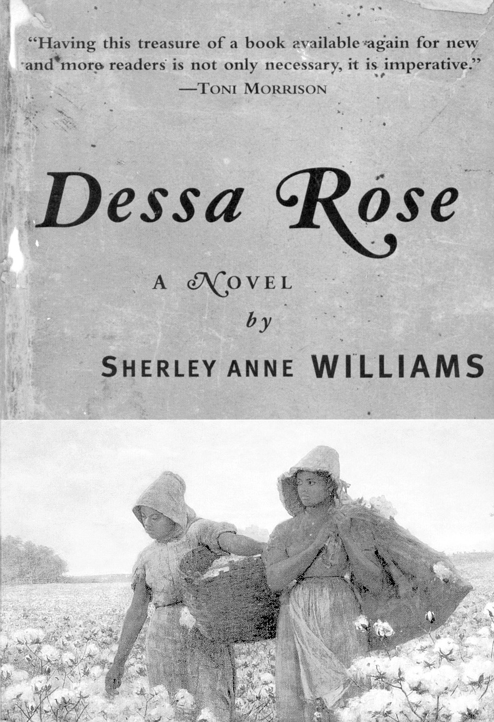 Levine remembered that the cast for the movie Dessa Rose was assembled when word came that filming was not going to happen. Cicely Tyson and Donald Sutherland were reportedly signed for parts.