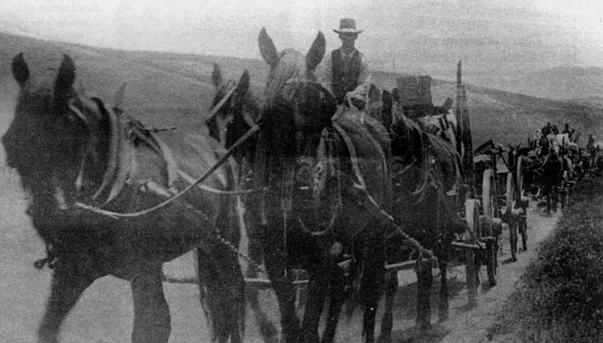 Leaving Warner Springs, on the road to Pala, 1903 - Image by Dave Allen
